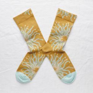 Socken Anémone