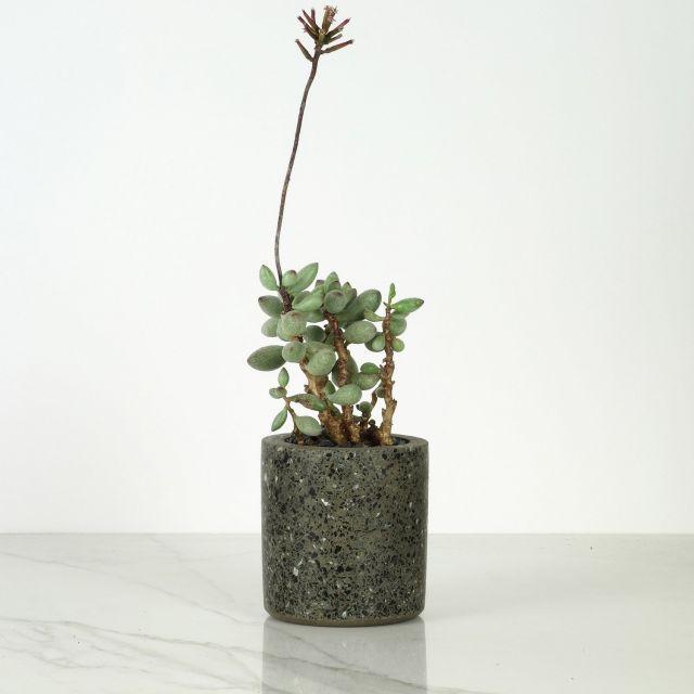 Pflanzentopf Terrazzo klein