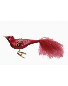 Festive Bird