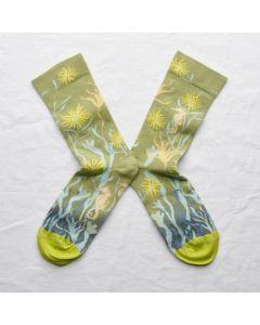 Socken Hippocampe